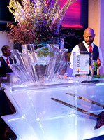 patron-ice-bar-foxgloves-sd-museum-of-art-alive-2013-opening-celebration-RMB_0160